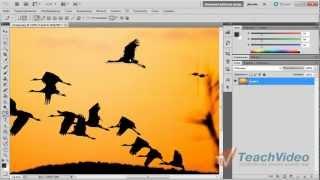 Как вырезать объект или человека в Photoshop?