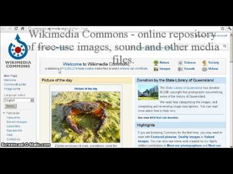 Wikipedia tutorial video :)