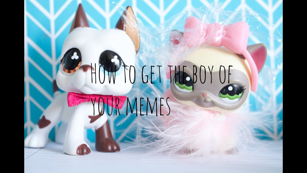 maxresdefault lps how to get the boy of your memes youtube,Lps Memes