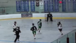 buzz jr b vs green gaels box lacrosse highlights