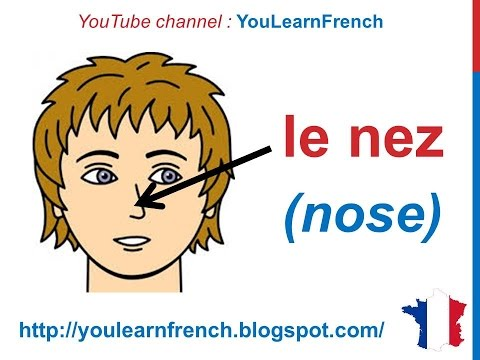 French Lesson 30 - FACE BODY VOCABULARY - Le visage (Parts of the head) Partes del cuerpo en francés