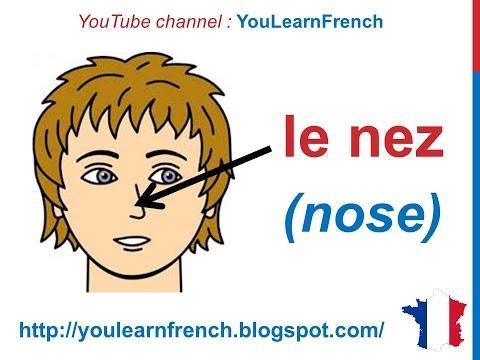 French Lesson 30 - FACE BODY VOCABULARY - Le visage (Parts of the head) Partes del cuerpo en francés