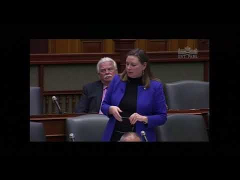 MPP Fife speaks against the privatization of police services in Ontario