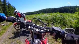GoPro: Bonus Trail (Honda CRF230F)