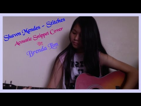 Shawn Mendes - Stitches (Acoustic Cover Snippet By Brenda Lim)
