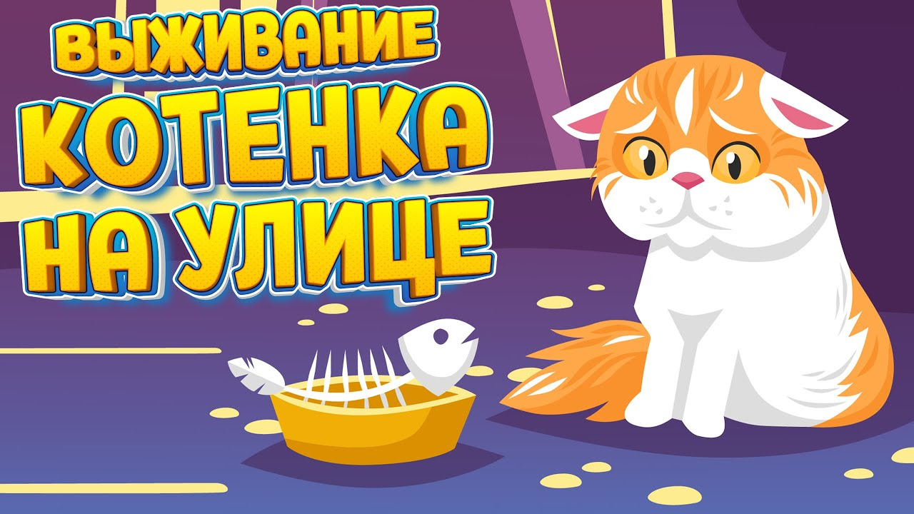 ВЫЖИВАНИЕ КОТЕНКА НА УЛИЦЕ ( A Street Cat's Tale )