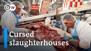 Coronavirus curses a German meat-processing plant | Focus on Europe