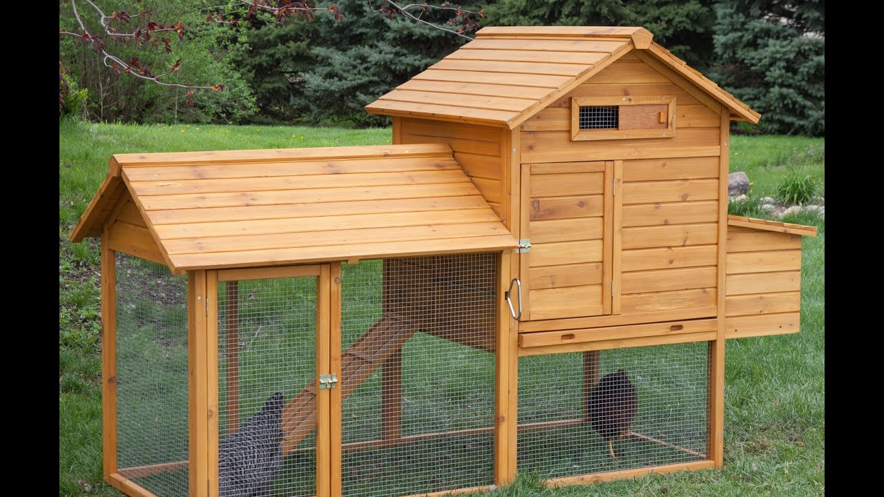top 10 chicken coops youtube