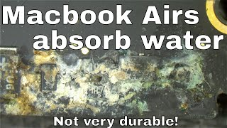 Dead Macbook Air from water spill on edge