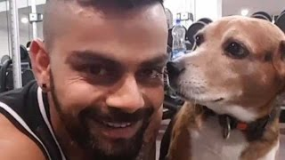 Virat kohli Workout In GYM Along with his Partner Dog Very Funny Embarrassing Video