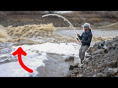 Fishing A ROARING Creek SPILLWAY After HEAVY Rain!!! (Insane)