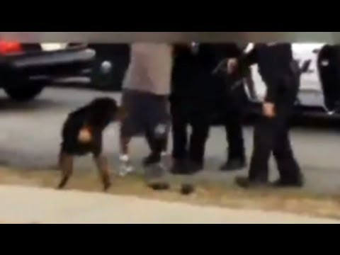 Cops Shoot Dog - Another Angle Emerges (GRAPHIC VIDEO)