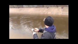 Crazy Steelhead Fishing........