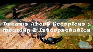 #34 Dreams about Scorpions - Meaning and Interpretation