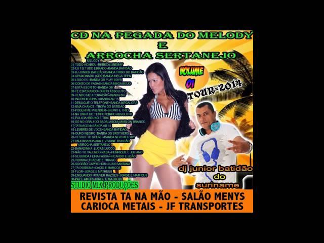cd hits sertanejo 5.8 2013