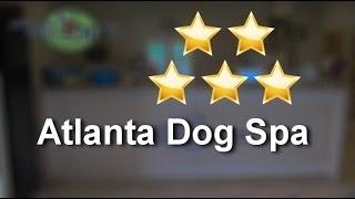 Atlanta Dog Spa Atlanta Impressive 5 Star Review By Andrew E.