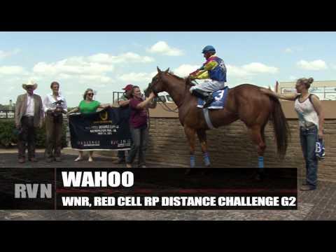 May 16 Quarter Racing Update: Remington Park