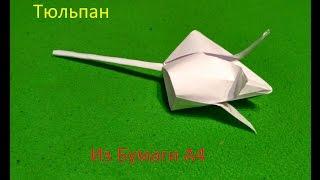 оригами: Тюльпан из бумаги А4