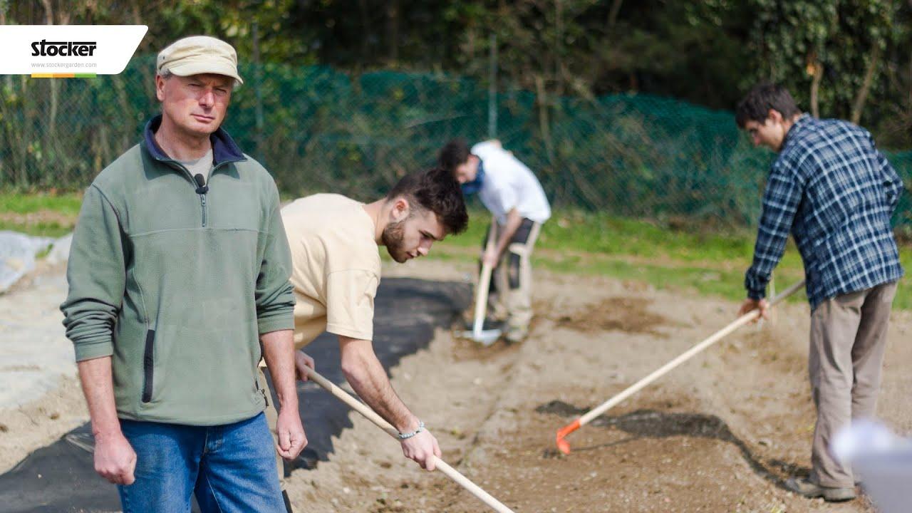 Orto in terrazzo fai da te: idee su come farlo e cosa piantare