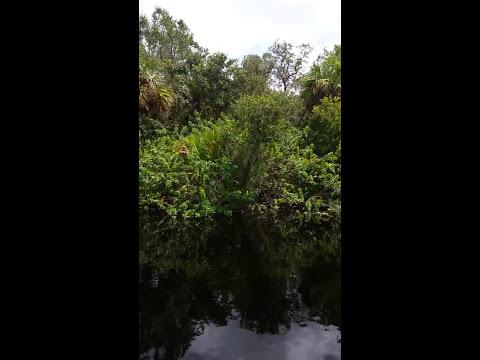 Abandoned Phosphate Docks from 1800's on Peace River, Punta Gorda, Florida