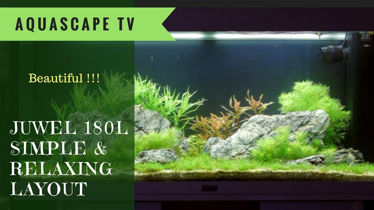 Juwel 180l Simple And Relaxing Aquascape Design Aquascape Tv Youtube