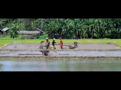 Reasons Why Invest in Zamboanga del Norte