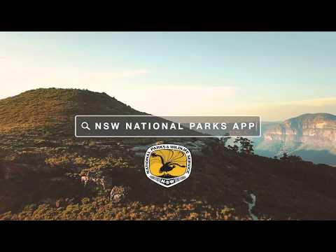 NSW National Parks App - Download Your Next Adventure | #NSWParks