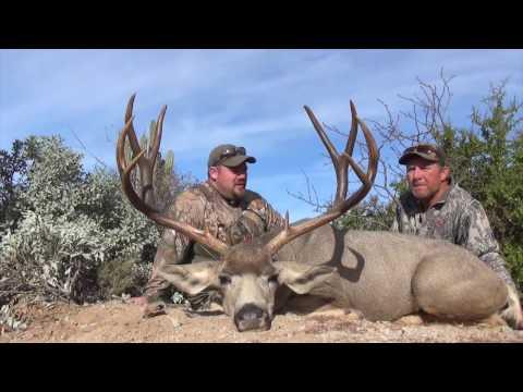 Wapiti Ridge Outfitters Mexico - Mule Deer