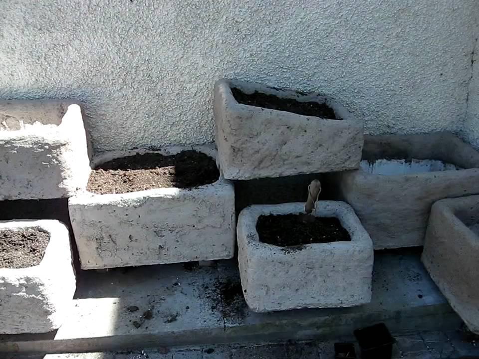 Polystyrene hypertufa troughs youtube for Styrofoam cement blocks