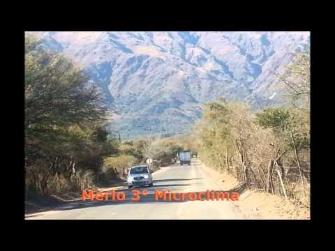 """HIMNO A MERLO Version Nueva y Original """"DE COCO ALTAMIRANO"""""""
