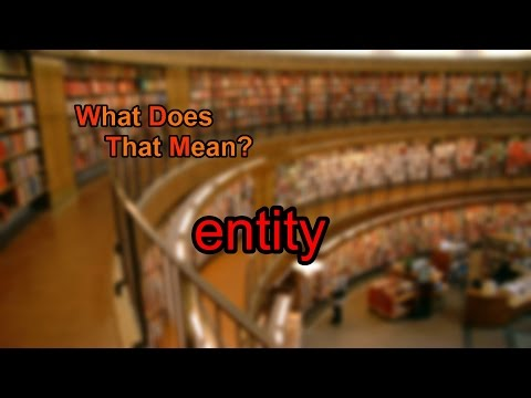 What does entity mean?