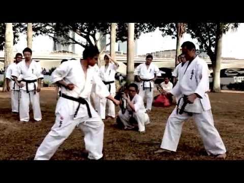 We Are Shinkyokushin