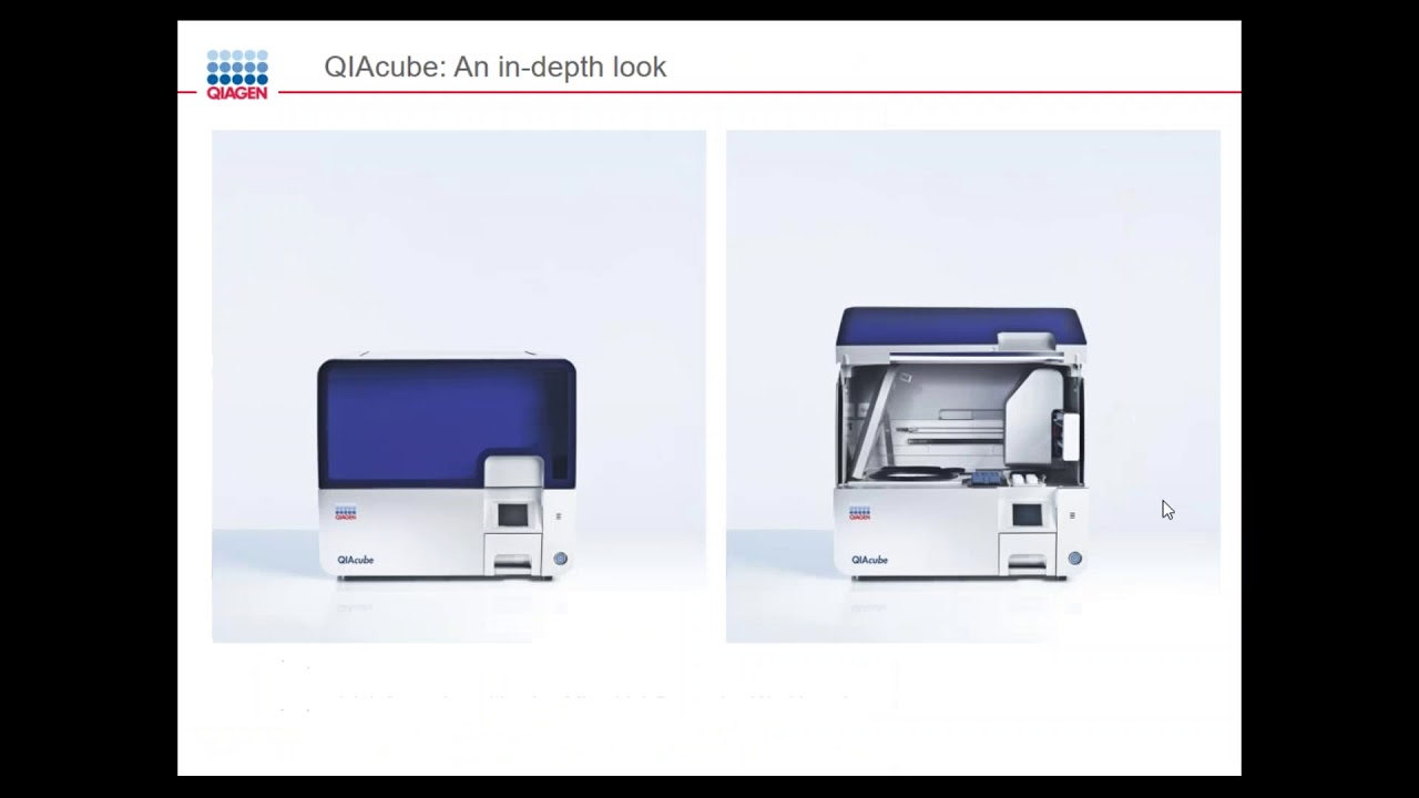 Automated Nucleic Acid Purification From Diverse Sample Types Youtube