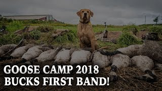 Goose Camp 2018 | Goose Hunting New York