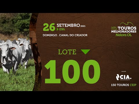 LOTE 100 - LEILÃO VIRTUAL DE TOUROS 2021 NELORE OL - CEIP