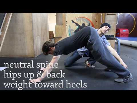 1. Quadrupedal Movement: The Forward Crawl