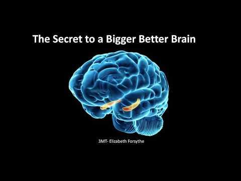 3MT 2018: Dr Elizabeth Forsythe, The Secret to a Bigger, Better Brain
