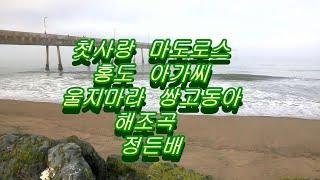 듣기좋은 트로트 메들리5곡(가수 김정아)