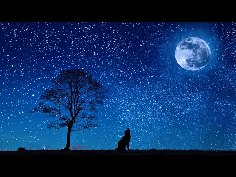 8 HOURS of Relaxing Nature Sounds for Sleeping - Sounds to Fall Asleep to - Deep Sleep Sounds