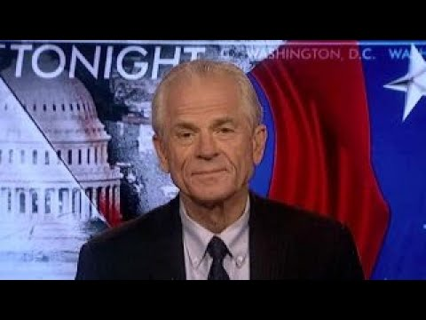 Peter Navarro explains why Germany is a danger to US, Europe
