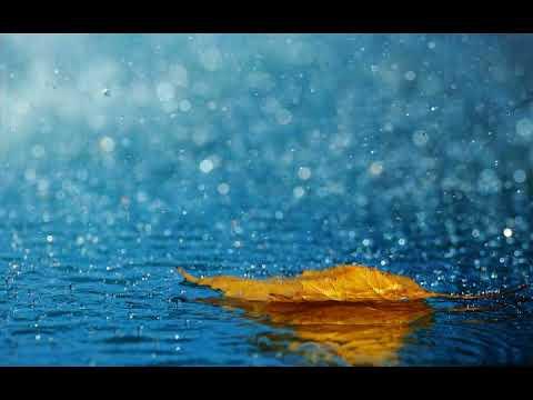 Beautiful Rain Day Hd Wallpapers Photos Youtube