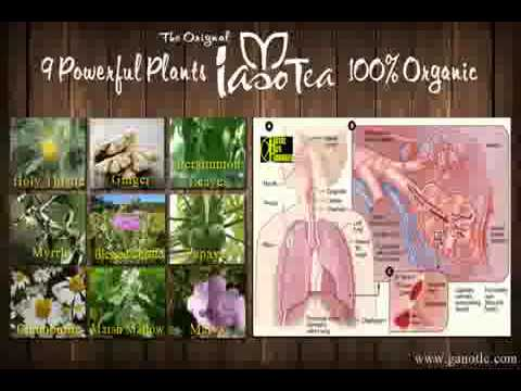 Benefits of Iaso Tea by Total Life Changes TLC-Detox Lose ...