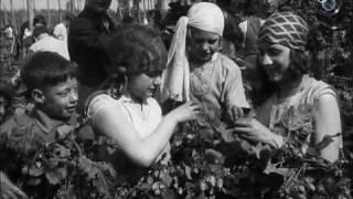 Hop Picking In Kent (1929)