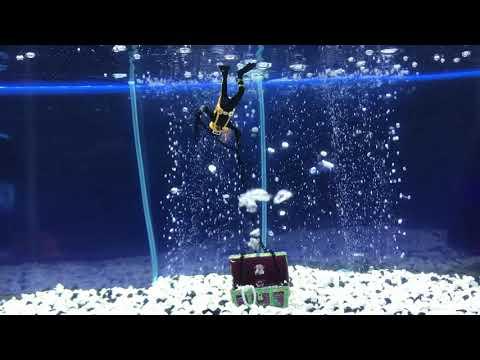 Penn-Plax Treasure Diver Action Air Ornament Bundle