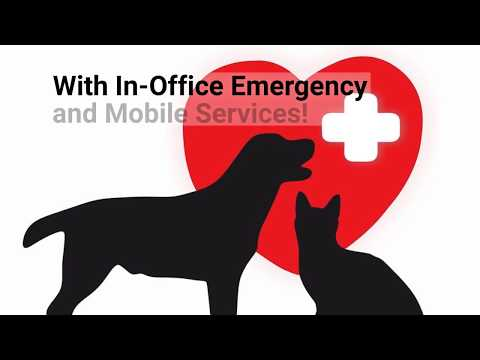 Healthy Pets Veterinary Care - We're Always Here When You Need Us the Most
