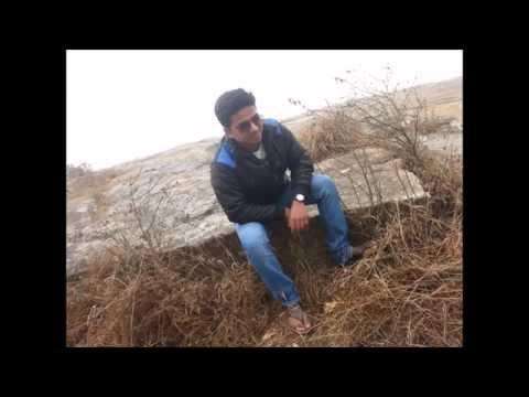 Going in style ------- SHAIK ANSARI