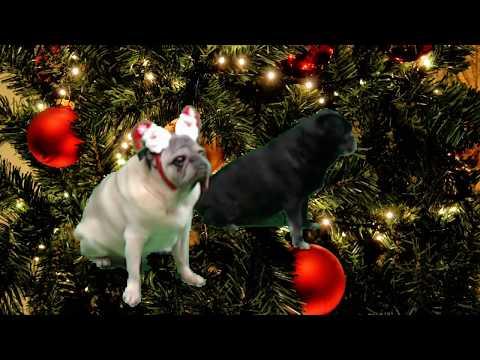 Pugs Living Christmas Ornaments