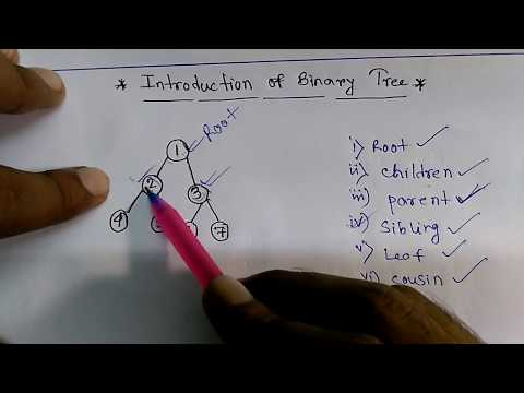 Binary tree: Root,parent, children, Leaf node, Sibling,