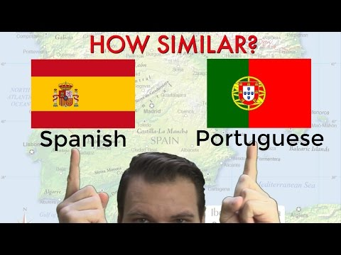 How Similar are Spanish and Portuguese?