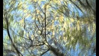 Осенние напевы_Краевская_Орша_клип.avi(, 2011-11-25T08:34:31.000Z)